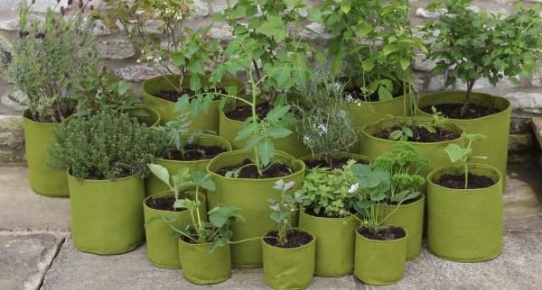 σάκοι φύτευσης λαχανικά λαχανόκηπος φυτεύω κηπουρός